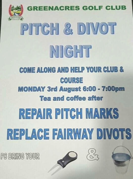 pitch and divot